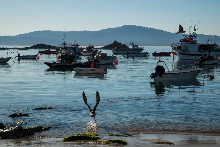 corrubedo-puerto-gaviota.jpg