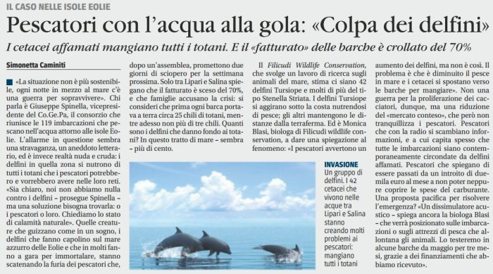huelga-delfines-islas-eolias.jpg