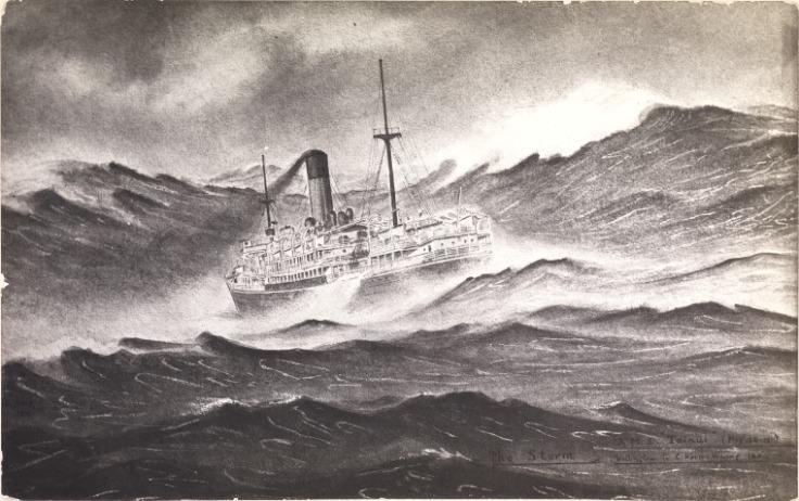 tainui-1911.jpg