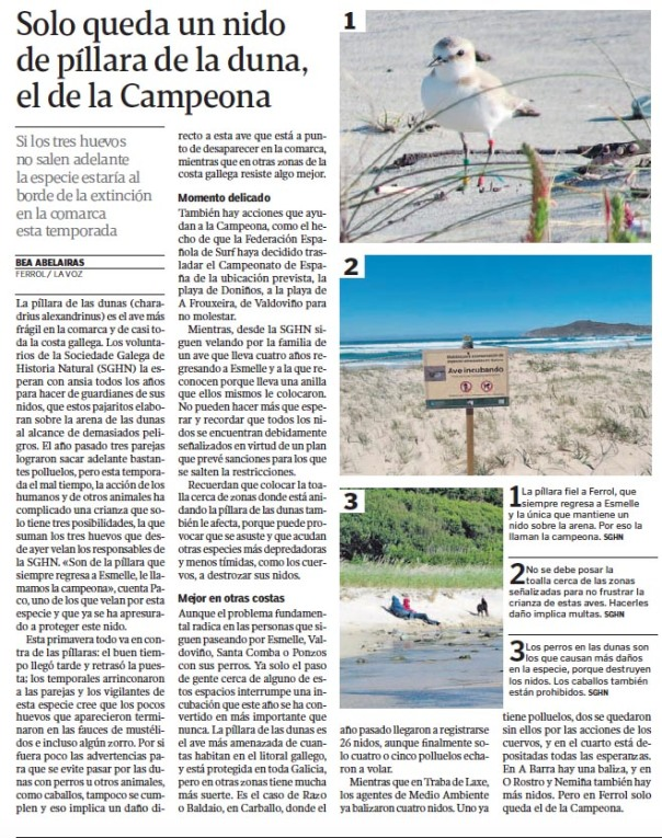 pillara-campeona-la-voz-de-galicia.jpg